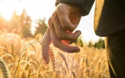Prázdninová praxe – 1. ročník Agropodnikání